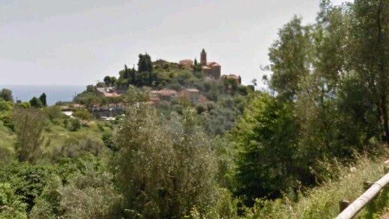Terrain Réf. : V10088 à Castellar : photo1